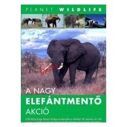 Planet Wildlife: A nagy elefántmentő akció