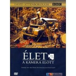 David Attenborough: Élet a kamera előtt (BBC)