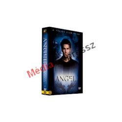 Angel 1. évad (DVD)