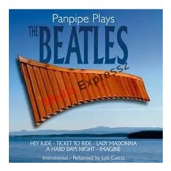 Panpipe Plays - The Beatles