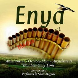 SHAME MAGUIRE Panpipe Plays - Enya